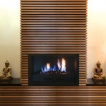 Download CAD files for Elegance Gas Fireplace