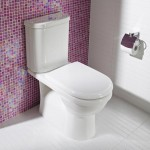 Download CAD files for Newport Vitreous China Wall Faced Pan and Close Coupled Smartflush Cistern