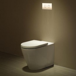 WC-Wall Faced-Fowler Seido Invisi Suite.jpg