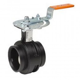 Victaulic-IPS-Vic-300 MasterSeal Butterfly Valve LH.jpg